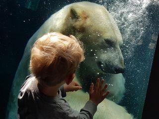 © Erlebnis-Zoo Hannover