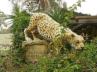 Eingang zum Range of the Jaguar Exhibit. © Pejorative.majeure