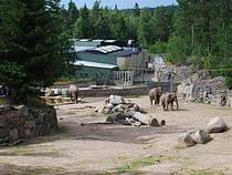 Elefanten im Kolmårdens Djurpark © mirjoran
