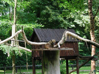 Tierpark Angermünde © Tierpark Angermünde